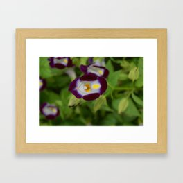 Eyes of July Framed Art Print