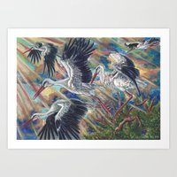 White Storks at Sunrise Art Print