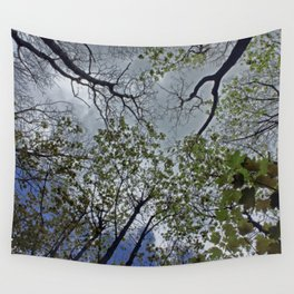Tree canopy in the spring Wall Tapestry