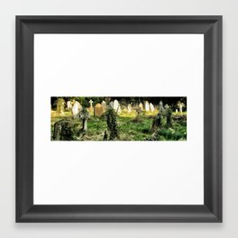 The Light of the Dead, Oxford 2006 Framed Art Print
