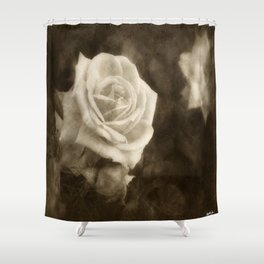 Pink Roses in Anzures 1 Antiqued Shower Curtain
