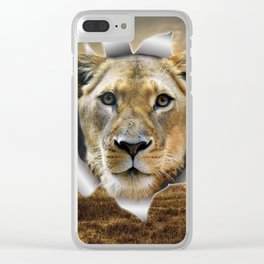 Lioness from Africa Clear iPhone Case