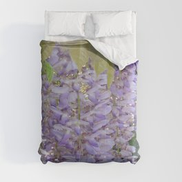Wisteria Racemes Comforters
