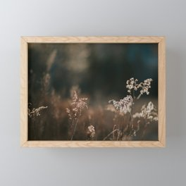 Sunlight and Nature #2 | Nature and Landscape Photography Framed Mini Art Print