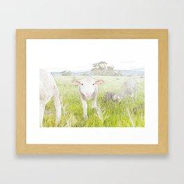 Wilson the Sheep Framed Art Print
