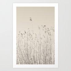 reeds neutral Art Print