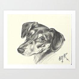 Beautiful dog Art Print