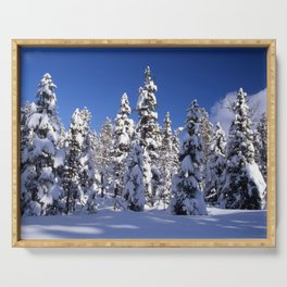 Snow covered trees in the forest. Winter day with blue sky. Serving Tray