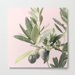 The time of olives Metal Print