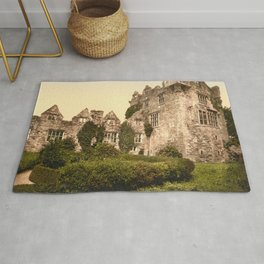 Vintage Photo-Print of Donegal Castle (1900) Rug