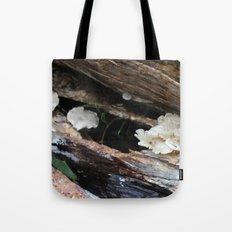 Where The Fairies Live Tote Bag