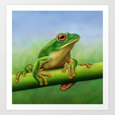 Moltrecht's Green Treefrog Art Print