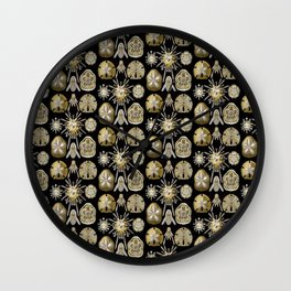 Ernst Haeckel Echinidea Sea Urchin Wall Clock