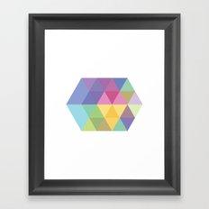 Fig. 015 Framed Art Print