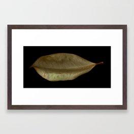 'Magnolia Leaf' Framed Art Print
