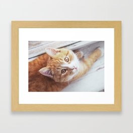 Cute cat Kristofferson Framed Art Print