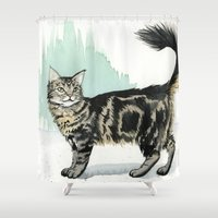 maine Shower Curtains featuring Maine Coon by Priscilla George