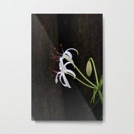 Swamp Lilly and Dark Wood Metal Print