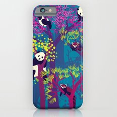 Both Species of Panda - Blue iPhone 6 Slim Case