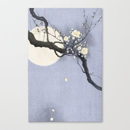 Full Moon and blossom Canvas Print