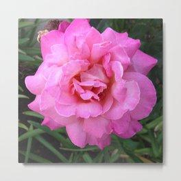 Renegade Roses II Metal Print