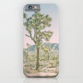 Joshua Tree Ombre iPhone Case