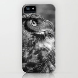 The Gaze by Teresa Thompson iPhone Case