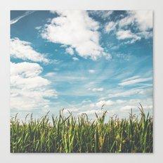 Green Field Blue Sky Canvas Print