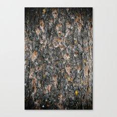 Tree Bark 1.0 Canvas Print