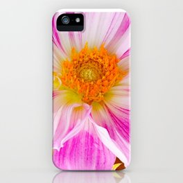 Dahlia Mix iPhone Case