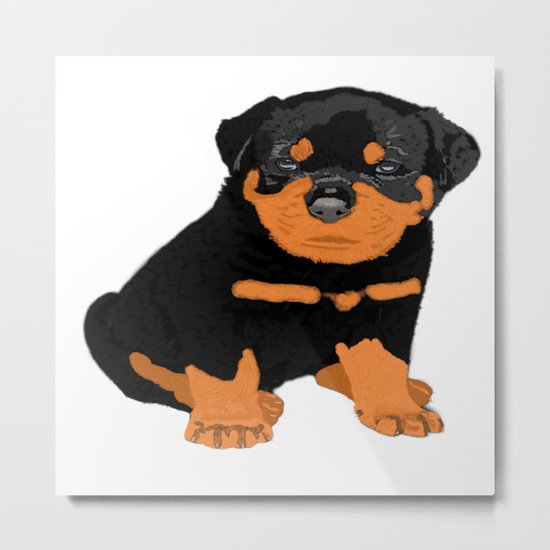 Lovely puppy Metal Print