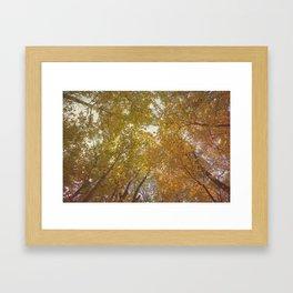 Falling for Fall Framed Art Print