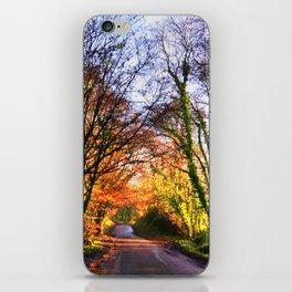 following the road iPhone Skin