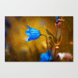 Petals #1 Canvas Print