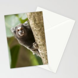 Little monkey Stationery Cards