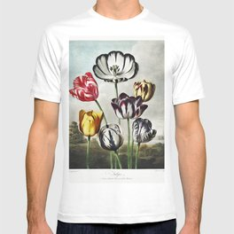 Tulips from The Temple of Flora (1807) T-shirt