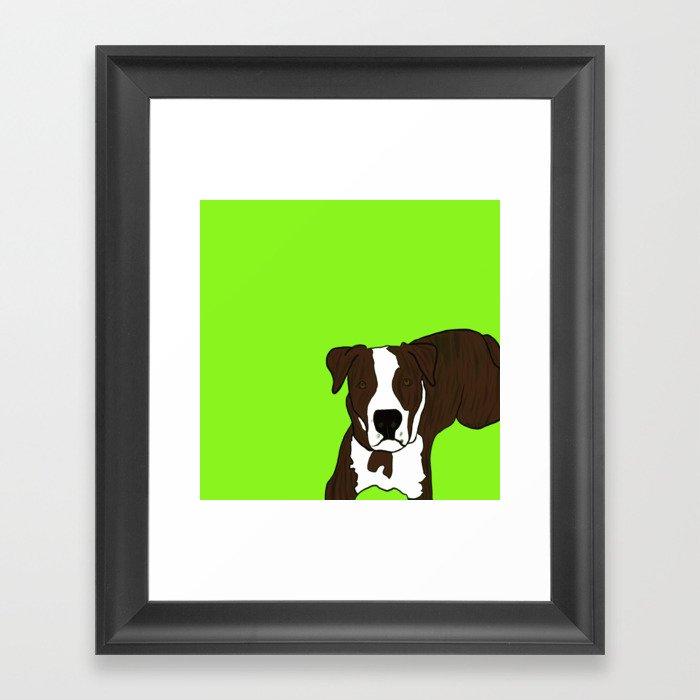Chico the Brindled Pit Bull Framed Art Print