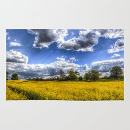 The May Time Farm Rug