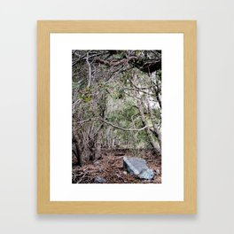 Deep In The Trees Framed Art Print