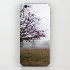 Tree in the mist iPhone & iPod Skin
