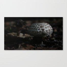 SHROOMS1 Canvas Print