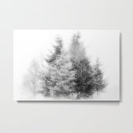Winter Magic in Black and White Metal Print