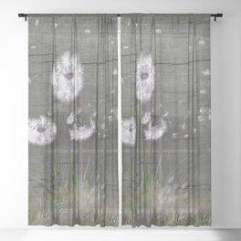 Rustic Barn Wood Series: Dandelion Seeds Fly Away Sheer Curtain