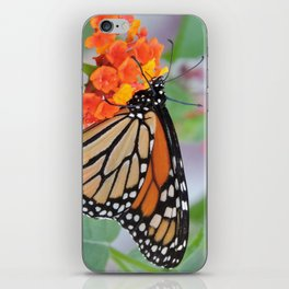 The Monarch Has An Angle iPhone Skin