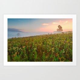 Misty Canaan Valley Sunrise Art Print