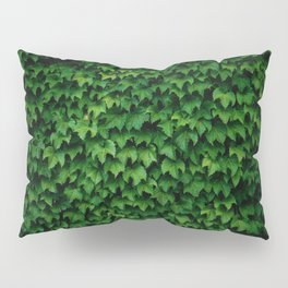 Ivy Pillow Sham