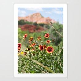 Palo Duro Canyon State Park Art Print