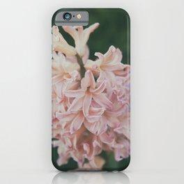 Hyacinthus iPhone Case