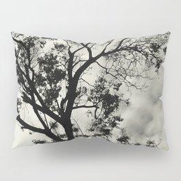 Jacaranda Tree Pillow Sham