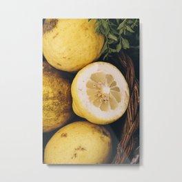 Campio de' Fiori Lemons Metal Print